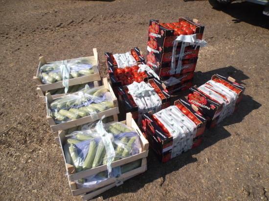 ВТамбовской области уничтожили полтора центнера санкционных продуктов