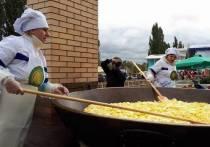 На гастрономическом фестивале в Тамбове приготовили полтонны картофеля