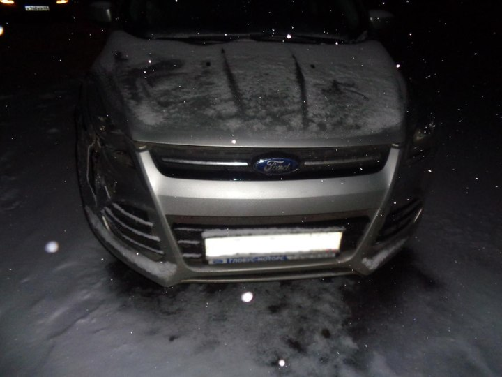 ВТамбовской области столкнулись иномарки, пострадала женщина