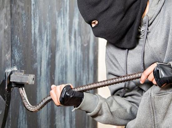 В Тамбове полиция раскрыла серию краж из гаражей