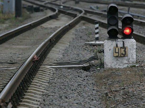 ВТамбовской области поезд насмерть сбил мужчину: обстоятельства пытаются выяснить
